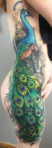 peacock-tattoo-minneapolis-studios